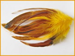 Feather Bundle with rings-Harvest Orange